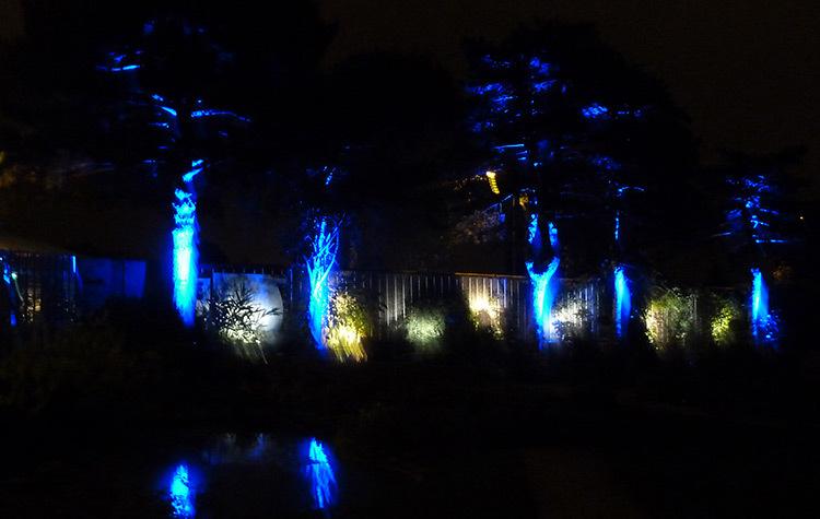 Emejing Jardin Des Plantes Nantes De Nuit Ideas - House ...