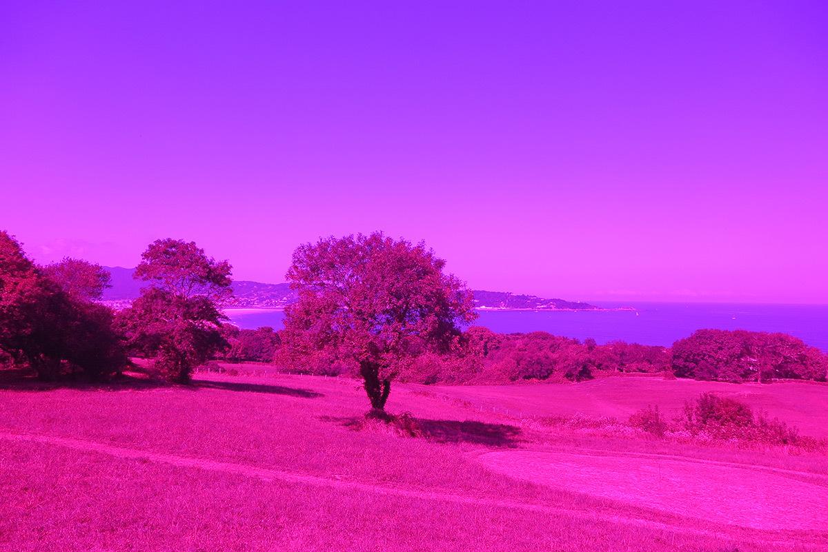 Argia, de Eric Michel - Château-Observatoire Abbadia, Hendaye, France - Perceptions 3, explorations sensibles 2016 - Photo : Eric Michel