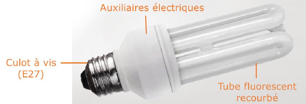 Fluorescer Pour Moins Consommer Avec Les Lampes Fluocompactes